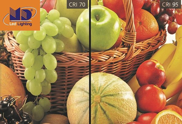 Chỉ số CRI là gì? Tất tần tật về chỉ số CRI   Led MD